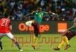 لوجود خطر على حياته… الكاميرون تستبعد لاعبها من كأس الأمم