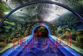"""الثقافة السعوديه : تؤسس متحف """"البحر الأحمر"""" في مدينة جدة التاريخية لعرض مقتنياتٍ ومخطوطاتٍ وصوراً وكتباً نادرة"""
