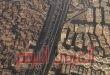 مصر..القوات المسلحة تكشف عن رقم ضخم لعدد السكان المتوقع عام 2052